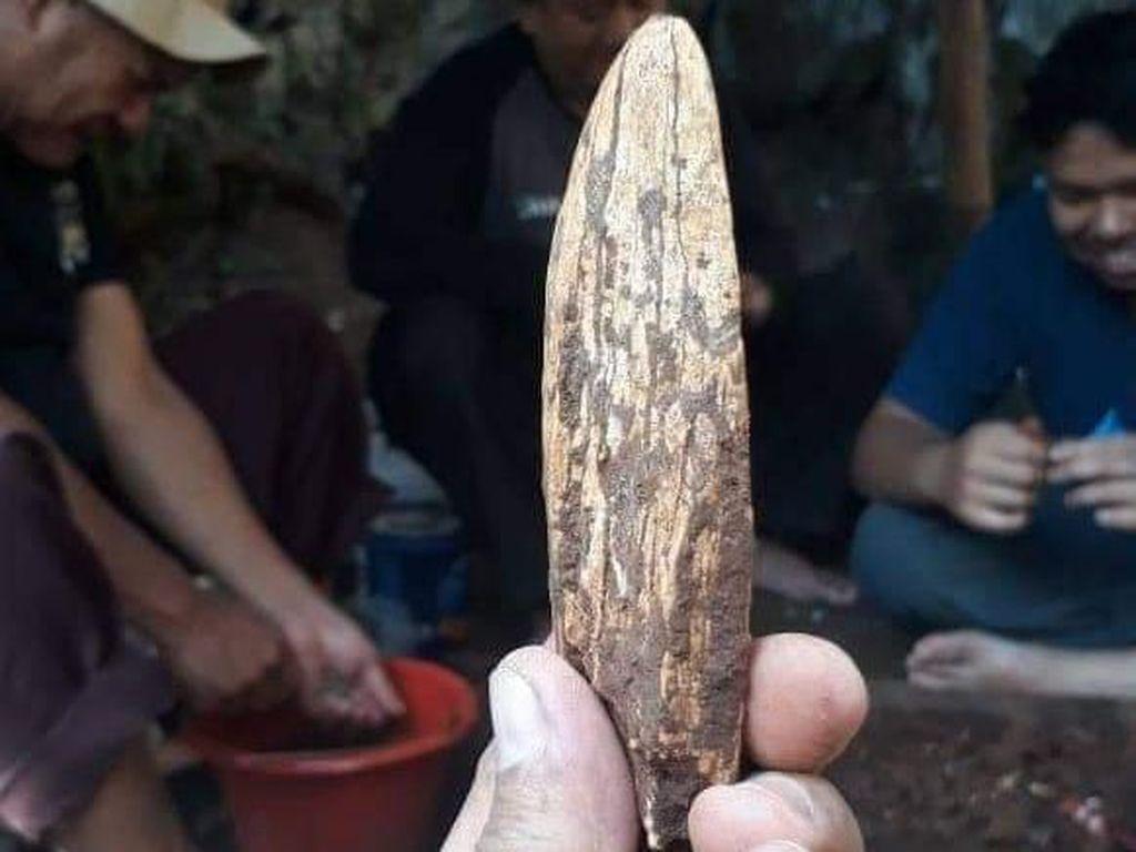 Mata Tombak Manusia Purba Ditemukan Tim Arkeolog di Gua Pawon