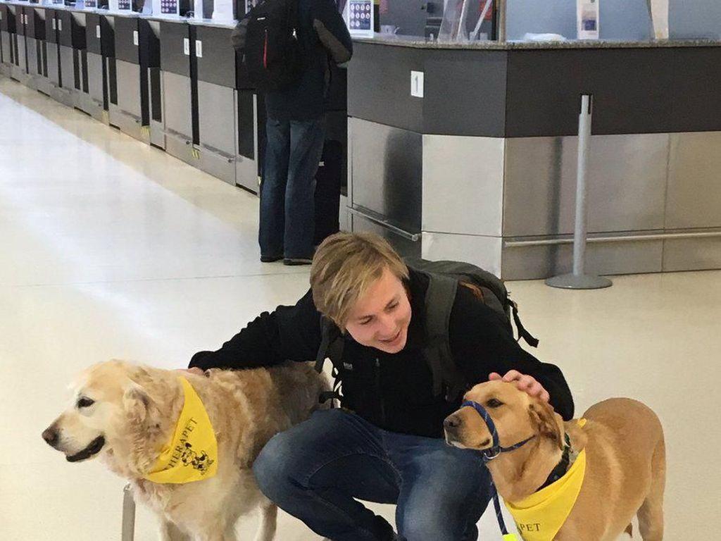 Aksi Anjing Gemas, Redakan Takut Penumpang yang Mau Naik Pesawat