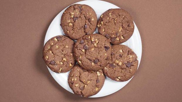 Ilustrasi biskuit laktasi