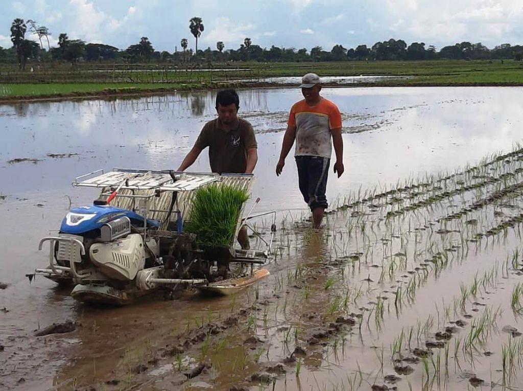 Hadapi Bonus Demografi, Kementan Genjot Modernisasi Pertanian