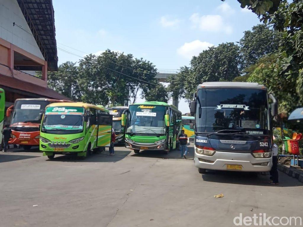 Tiket Pesawat Mahal, Pengusaha Bus Ketiban Durian Runtuh