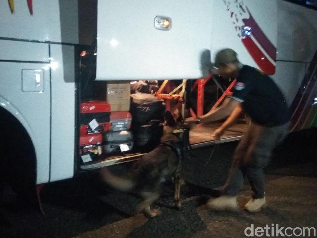 BNN Aceh Terjunkan Anjing Pelacak Periksa Barang Bawaan Penumpang Bus