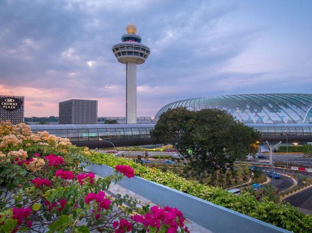 Terpesona Deretan Bandara Tercantik di Dunia