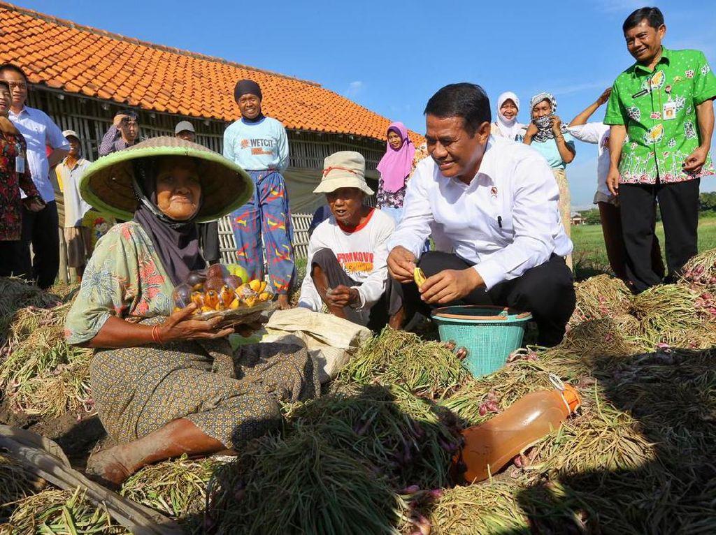 Kementan Paparkan Turunnya Ketimpangan Pendapatan di Desa dan Kota