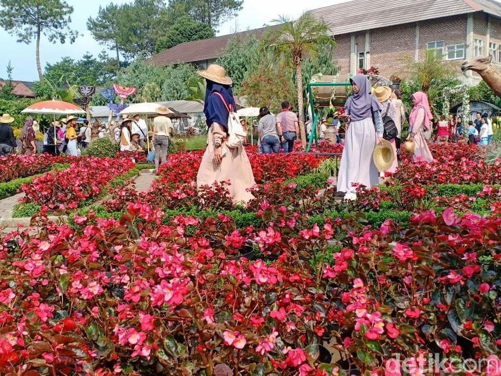 Yang Cantik-cantik di Bandung Barat