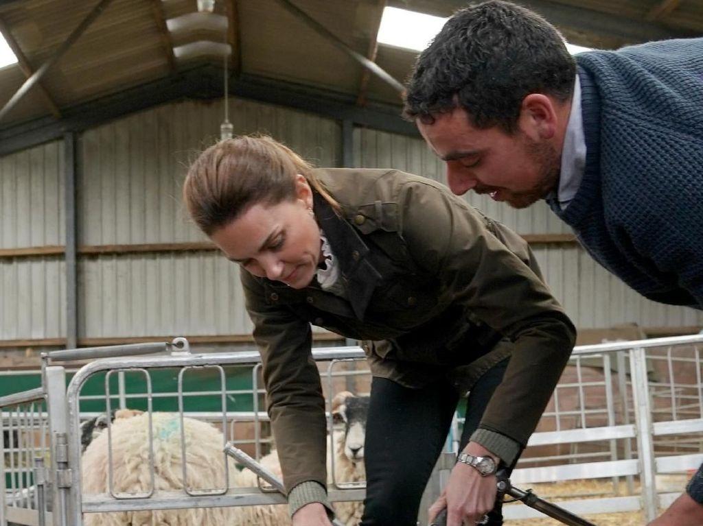 Foto: Gaya Stylish Kate Middleton saat Cukur Bulu Domba, Jaketnya Rp 5 Juta