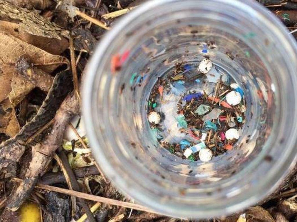 Manusia Telan Satu Sendok Teh Bahan Plastik Setiap Minggu