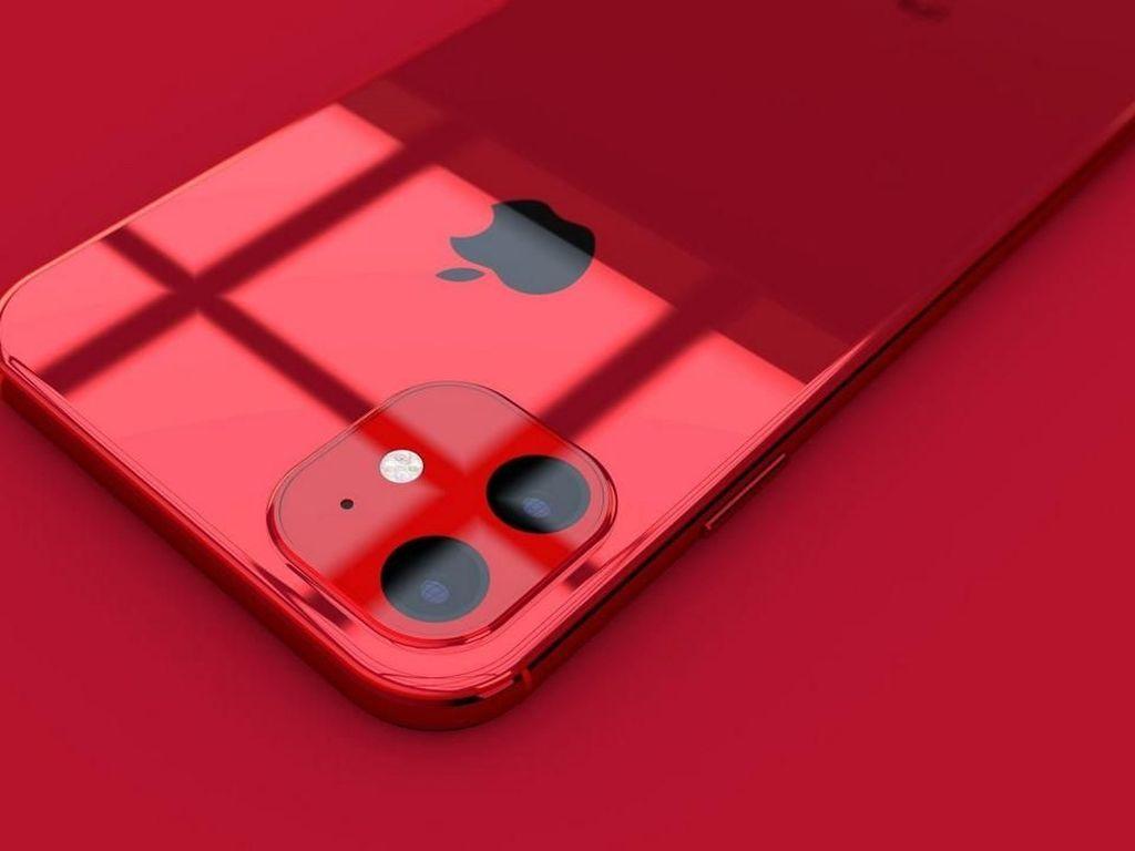 Penerus iPhone XR Punya Kapasitas Baterai Lebih Besar