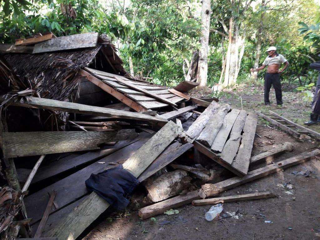Cot Girek akan Dijadikan Ekosistem Esensial Gajah di Aceh