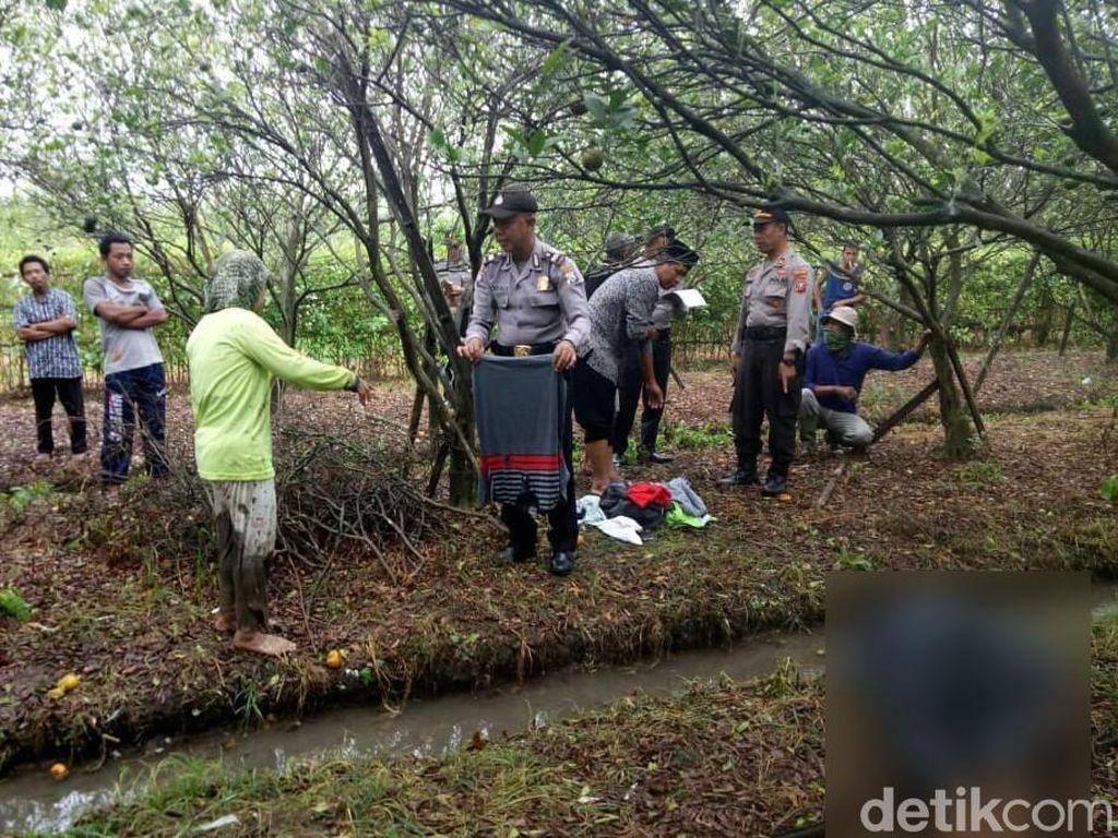 Pemudik asal Banyuwangi Ditemukan Tak Bernyawa di Kebun Jeruk