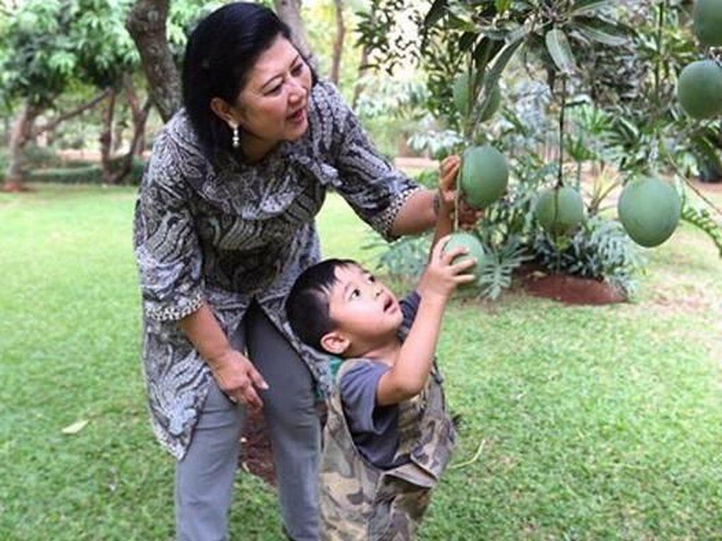 SBY Peringati Ulang Tahun Pernikahan Ke-43 di Makam Ani Yudhoyono
