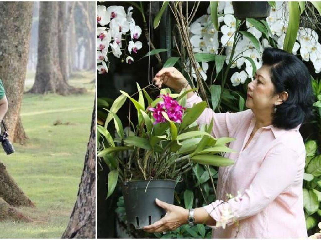 Februari: Ani Yudhoyono Sakit Kanker Darah dan Heboh Inses di Lampung