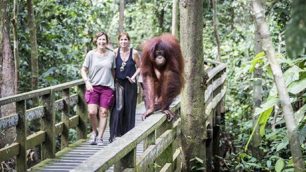 9 Destinasi Wisata Favorit Turis di Malaysia