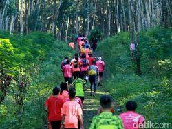 Cegah Corona, Sumatera Jungle Run di Riau Ditunda