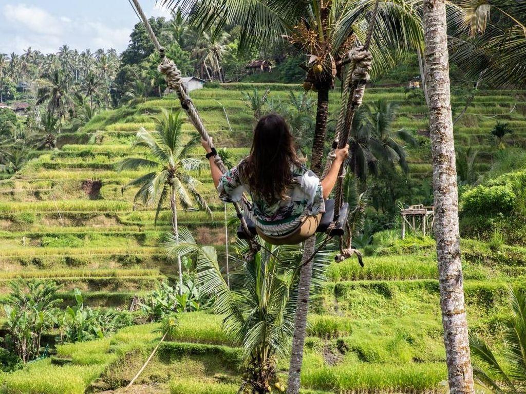 Bangga! Ubud di Bali Masuk Daftar 15 Kota Terbaik di Dunia