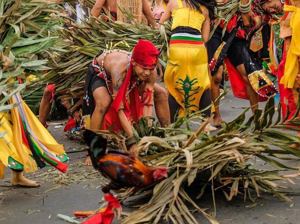Turis Asing Terhipnotis Atraksi Kebal Menginjak Duri Tajam di Kalteng