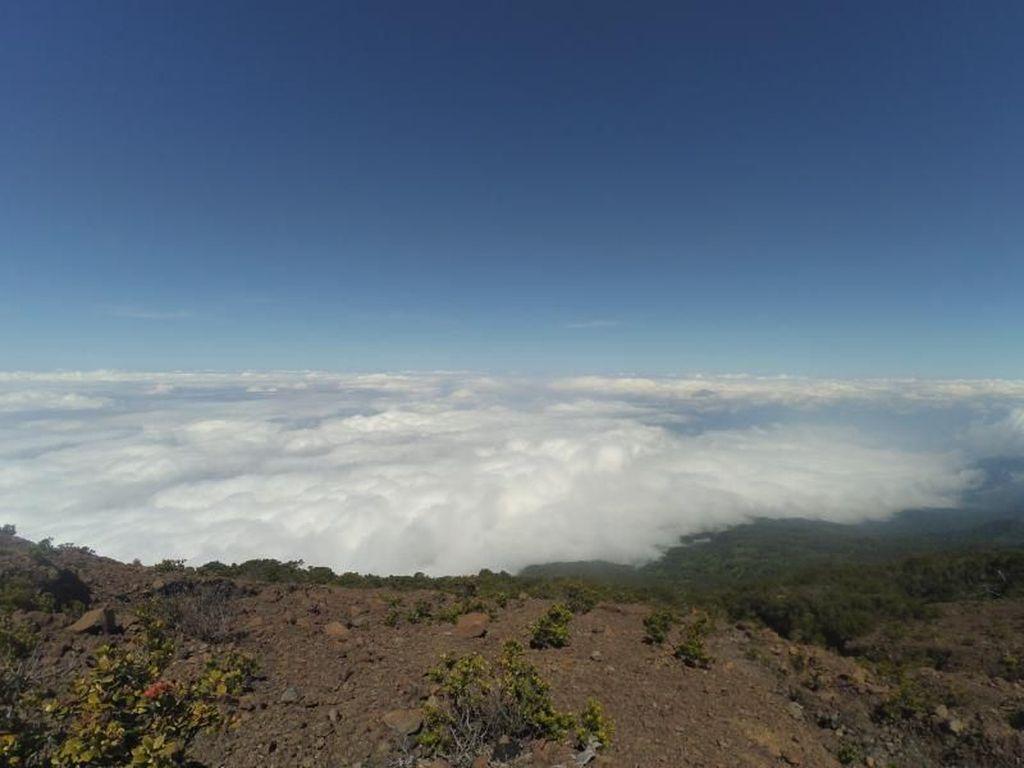 10 Gunung Tertinggi di Indonesia, Cocok untuk Pendaki