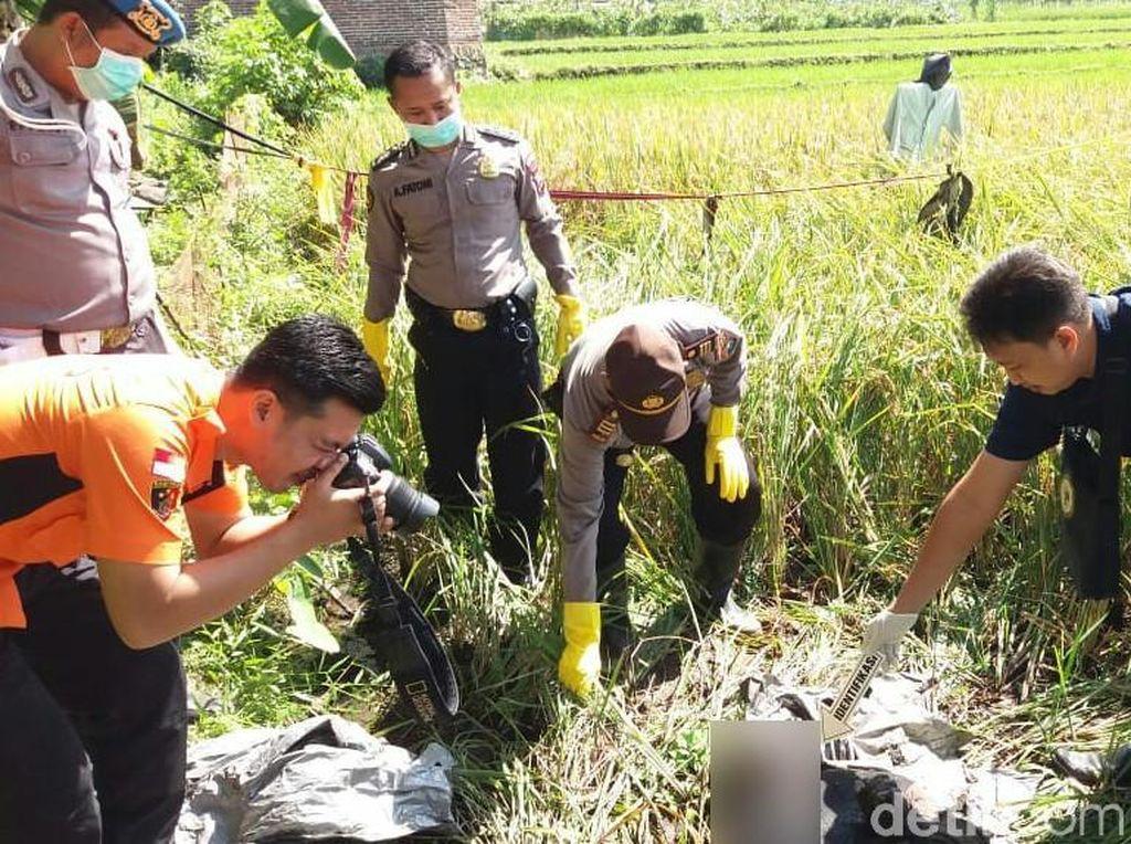 Sesosok Mayat Laki-laki Penuh Luka Ditemukan di Persawahan Banyuwangi
