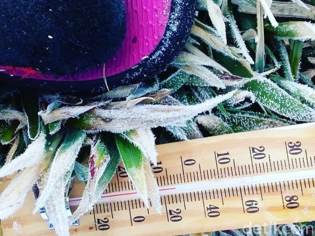 Diprediksi Embun Salju Akan Kembali Muncul di Dieng Besok