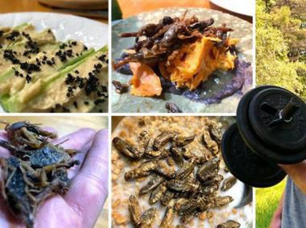 Pilih Jadi Vegan, Remaja Ini Santap Serangga Sebagai Sumber Protein