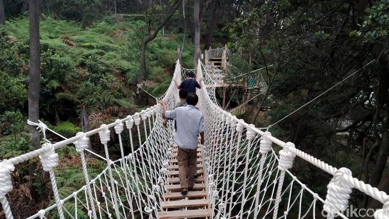 Sebelum berjalan di skywalk, traveler harus melintas jembatan goyang yang terbuat dari tali tambang ini. Jembatan goyang ini, jadi spot foto pembukaan sebelum sampai ke puncak Skywalk Cantigi (Wisma Putra/detikcom)