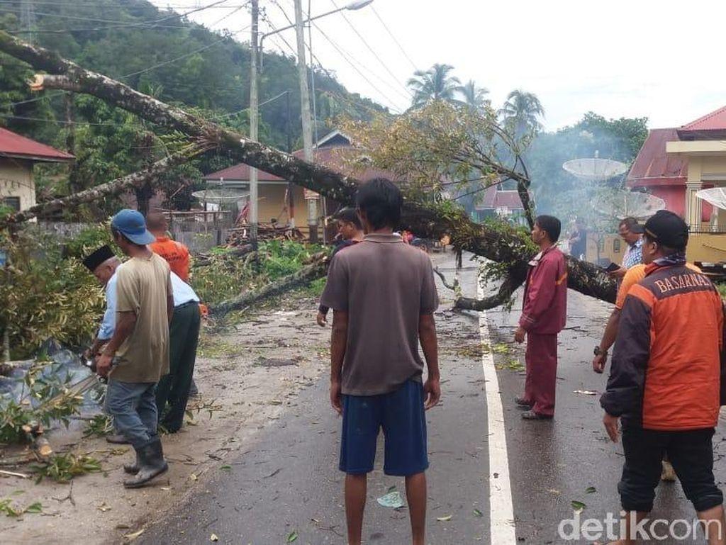 Pohon Tumbang di Padang, 1 Mobil dan 2 Rumah Rusak