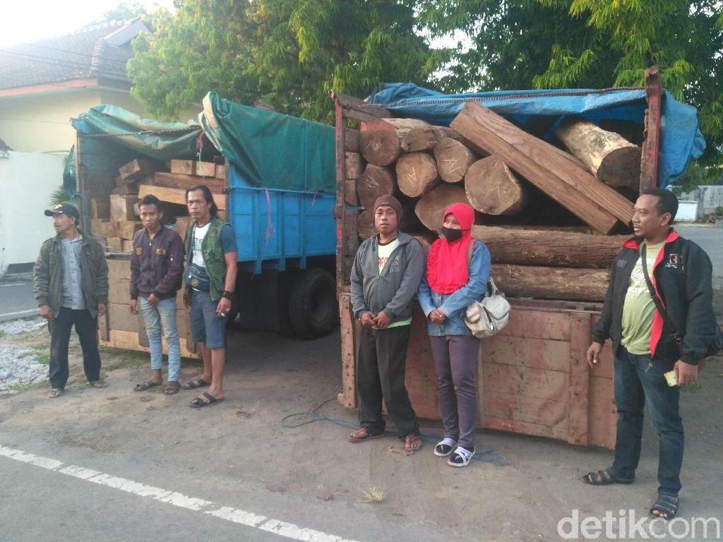 Angkut Kayu Sono Diduga Hasil Curian, Empat Warga Jember Diamankan