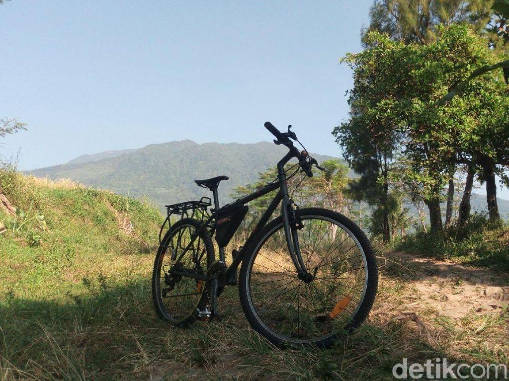 Foto: Jalur Sepeda di Semarang yang Segar Banget