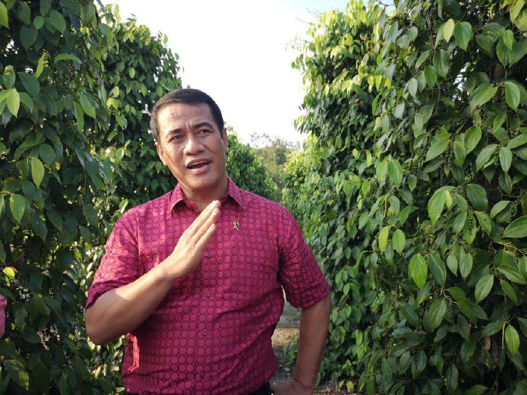 Jamin Perlindungan, Kementan Dorong Registrasi Komoditas Pertanian