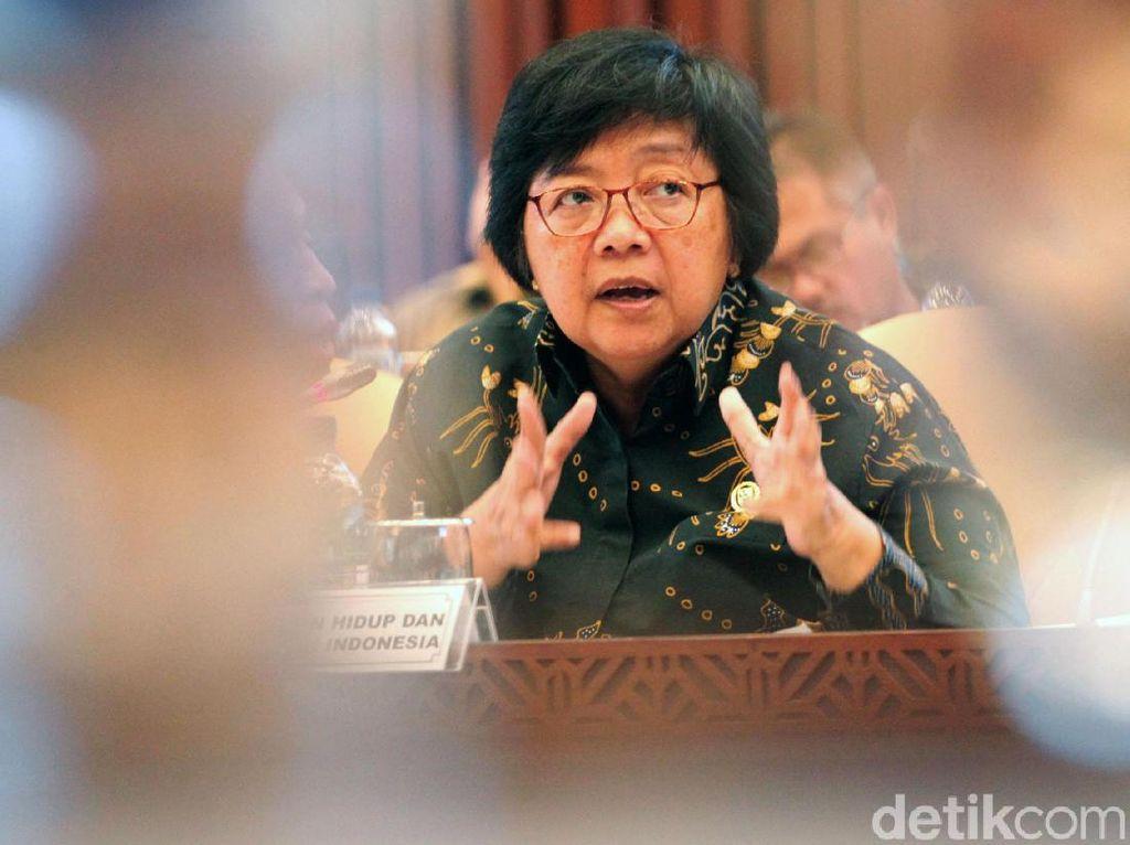 Menteri Siti: Karhutla Parah Dipengaruhi Panjangnya Hari Tanpa Hujan