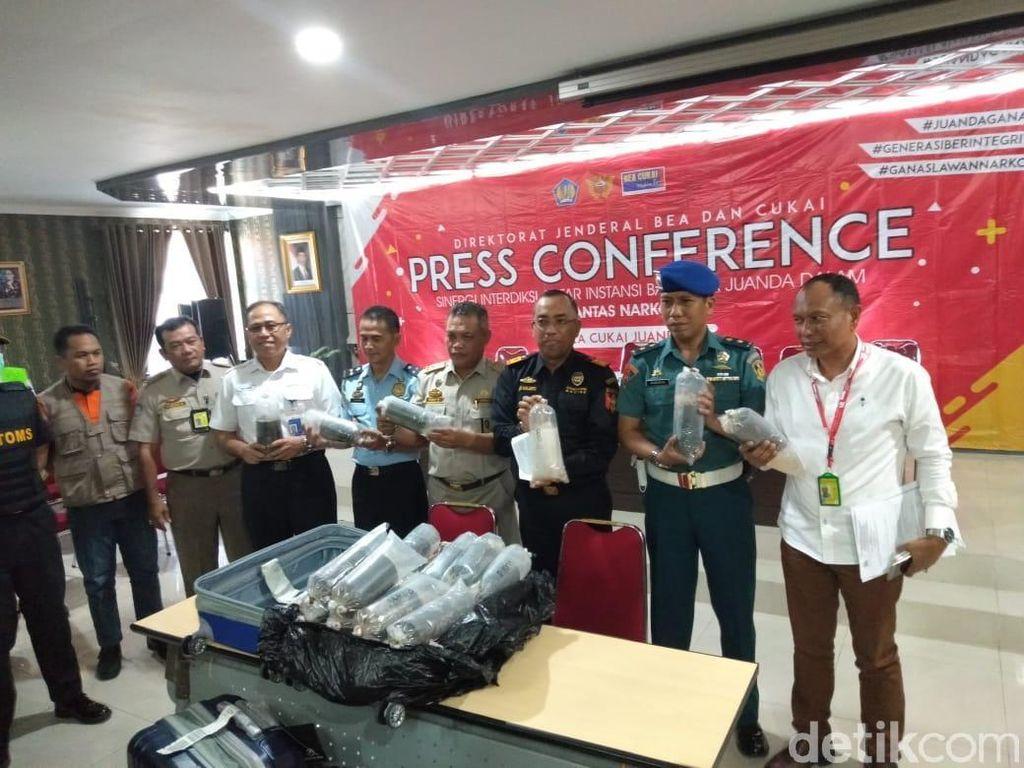Penyelundupan Baby Lobster Senilai Rp 17,3 M ke Singapura Digagalkan