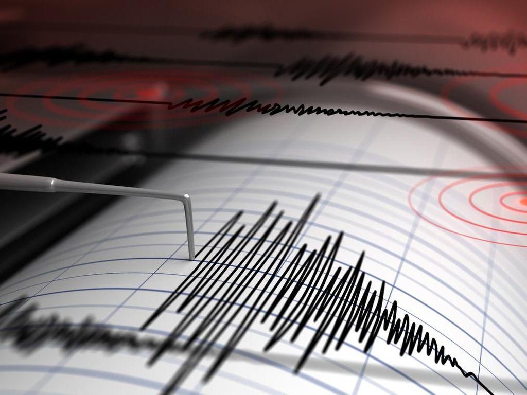 Gempa M 7,2 Pulau Bacan Sebabkan Kerusakan Bangunan
