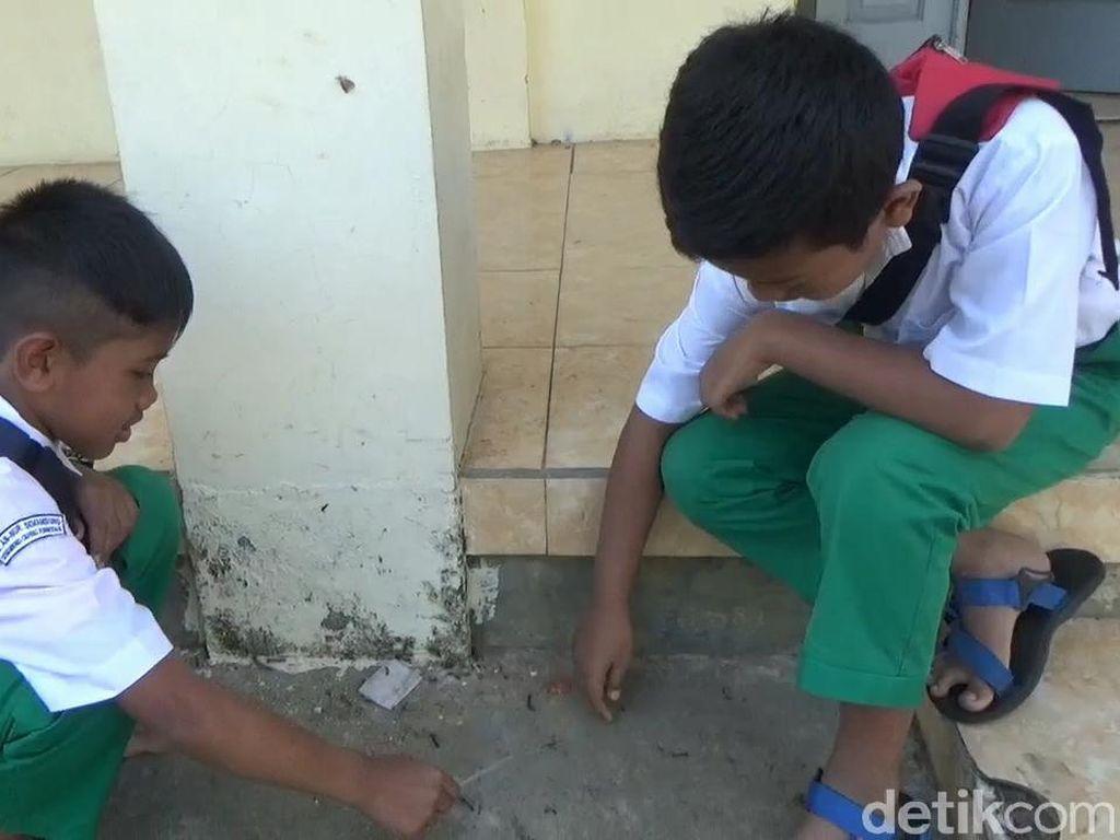 Ulat Bulu Serang Sekolah di Pasuruan, Malah Dibuat Mainan Para Siswa