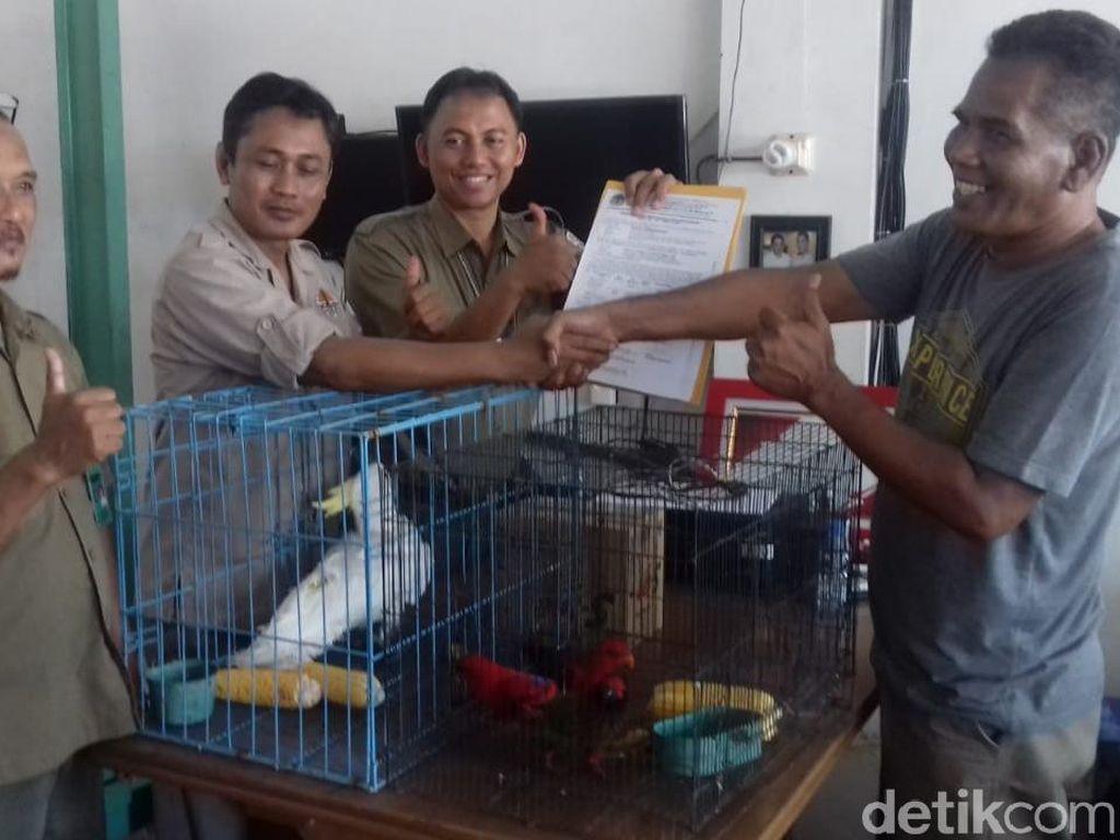 BBKSDA Jabar Amankan 6 Satwa Dilindungi dari Taman Wisata Jempol Cirebon