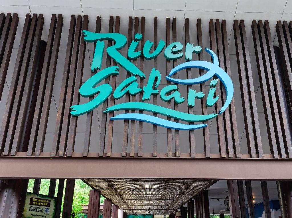 Pengalaman Serunya Mengarungi Sungai di River Safari Singapura