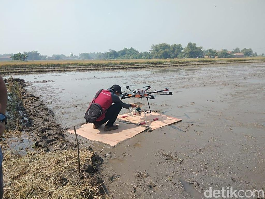 Pertanian 4.0, Tebar Benih Padi Pakai Drone
