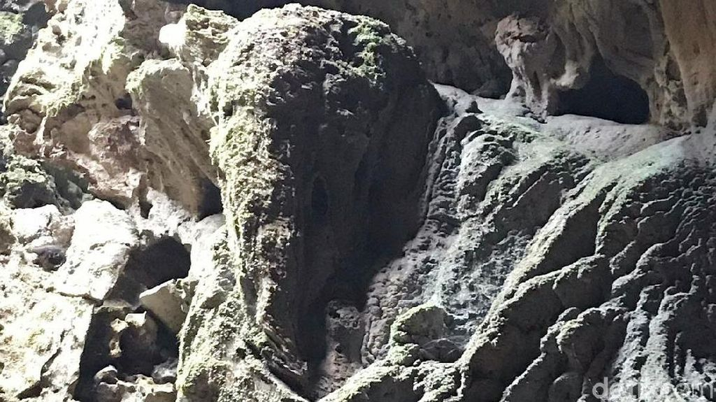 Foto: Heboh Batu Mirip Kepala Gajah di Purworejo