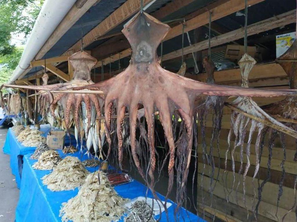 Ke Aceh Besar, Bawa Oleh-oleh Ikan Asin Ya