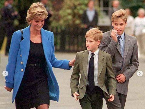 Putri Diana: William dan Harry Mendesakku untuk Tinggalkan Inggris