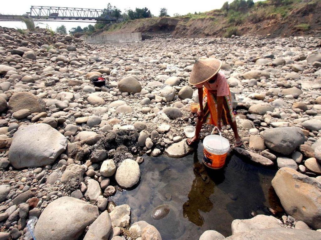 Potret Kekeringan di Sejumlah Wilayah di Pulau Jawa