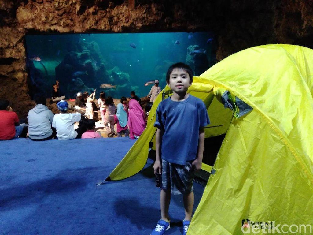 Serunya Berkemah di Sea World Sambil Memandangi Biota Laut