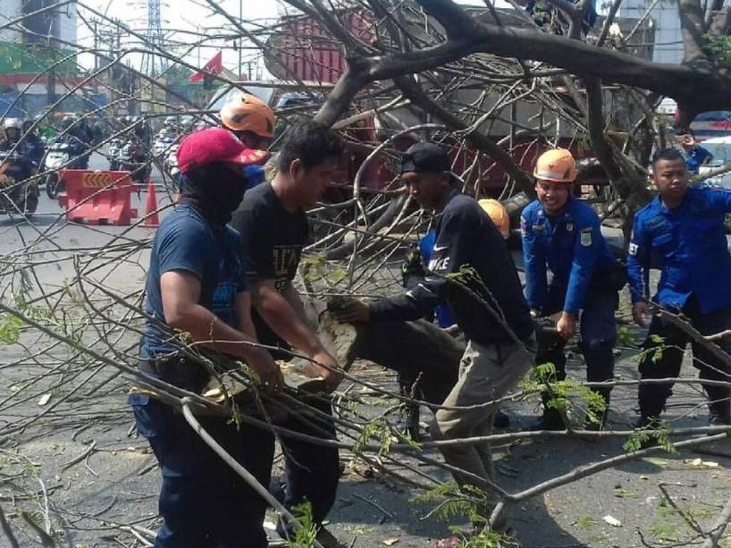Sebuah Pohon Tumbang Timpa Warung di Bekasi, Tak Ada Korban