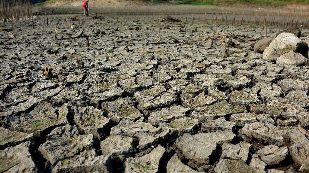 Waduk Grojokan di Jombang Mulai Mengering