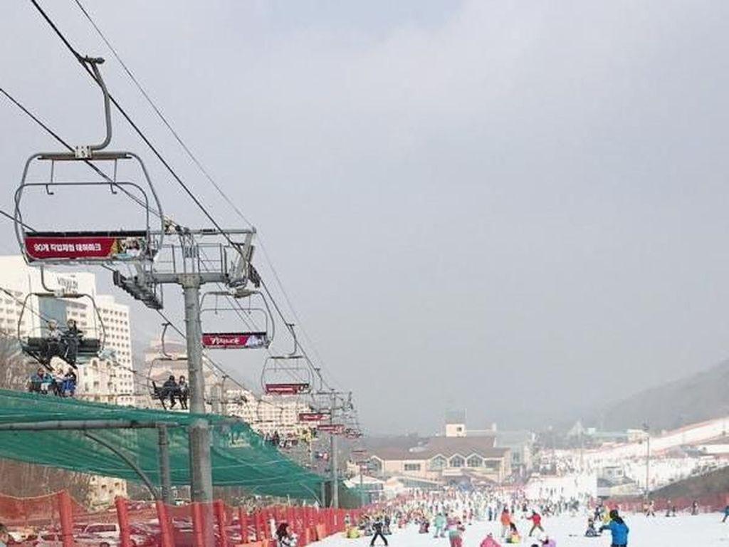 Tempat Wisata Wajib di Korea Selatan Saat Musim Dingin