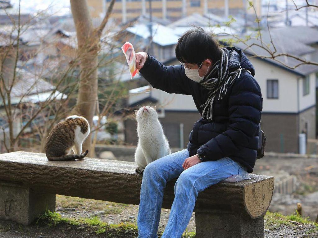 Cara Unik Orang Jepang Temukan Kucing yang Hilang