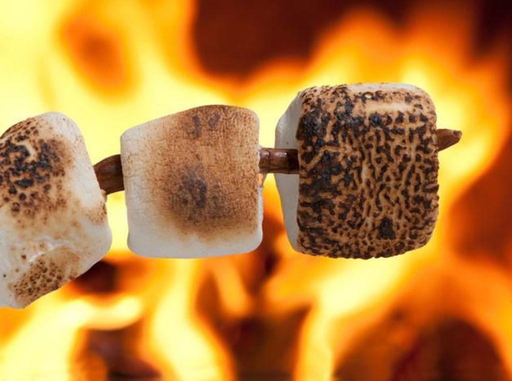 Netizen Perdebatkan Lamanya Waktu Untuk Panggang Marshmallow
