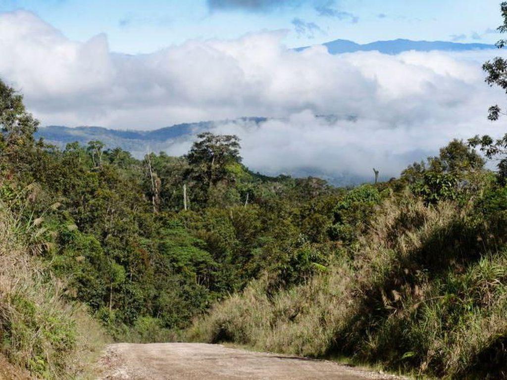 Pembantaian Etnis di PNG, PM Marape: Ini Hari Paling Menyedihkan