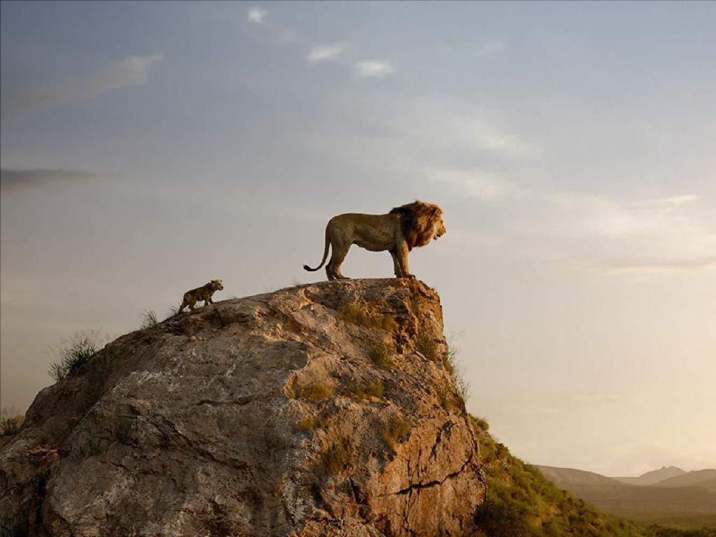 Dari Animasi Kini The Lion King Mengaum Versi Live-Action