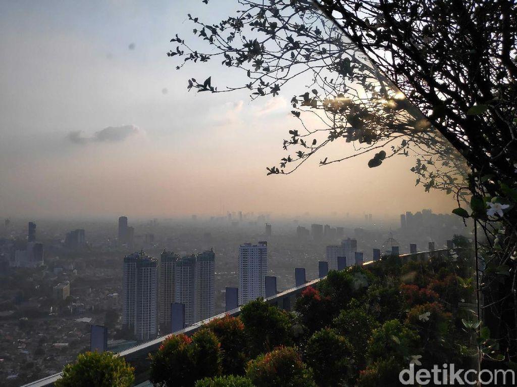 Studi: Paparan Polusi Bisa Bikin Tingkat Kecerdasan Menurun