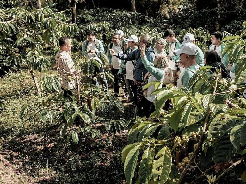 Eksplorasi Kawasan Borobudur, Tak Hanya Lihat Candi Lho!